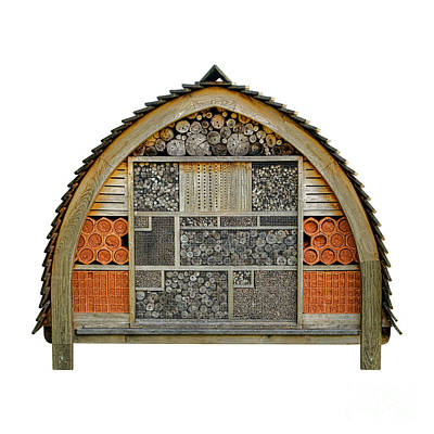 Bee Hotel Print by Olivier Le Queinec
