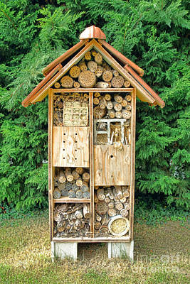 Bamboo House Photograph - Bee House by Olivier Le Queinec