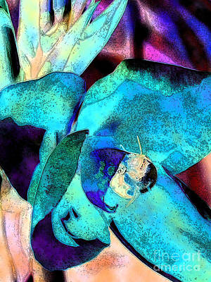 Canna Photograph - Bee Leeve 4 by Diane DiMarco