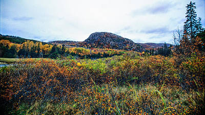 Coastal Maine Photograph - Beehive Viewed From Great Head Trail by Jeremy Herman