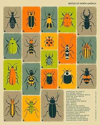 Insect Digital Art - Beetles Of North America by Jazzberry Blue