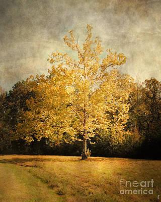 Autumn Scenes Photograph - Beginning Of Autumn by Jai Johnson