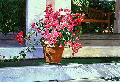Bel-air Bougainvillea Pot Print by David Lloyd Glover