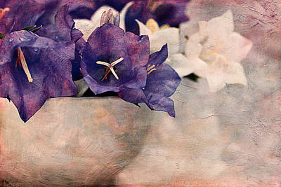 Bell Flowers Print by Maria Angelica Maira
