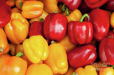 Bell Peppers Print by Rick Piper Photography