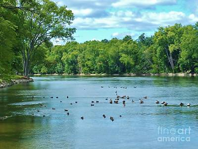 Joeseph Photograph - The Bend In The River   Indiana  Summer by Rory Cubel