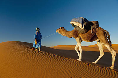 Simple Beauty In Colors Photograph - Berber Leading Camel Across Sand Dune by Ian Cumming