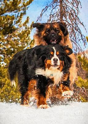 Bernese Mountain Dog And Leonberger Winter Fun Print by Gary Whitton