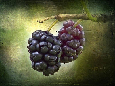 Purple Grapes Mixed Media - Berries by Melissa Smith