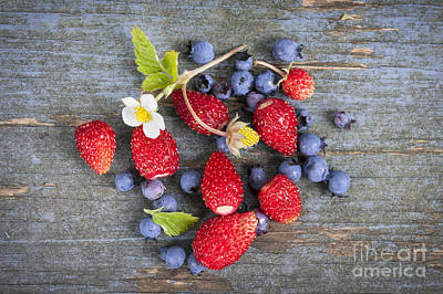 Berries On Rustic Wood  Print by Elena Elisseeva