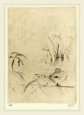 Reprint Drawing - Berthe Morisot French, 1841-1895, Ducks At Rest On The Bank by Litz Collection