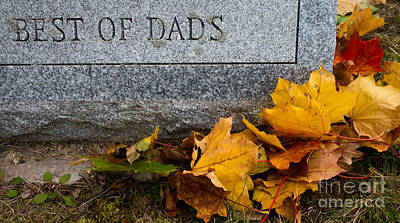 Fall Photograph - Best Of Dads by Amy Cicconi