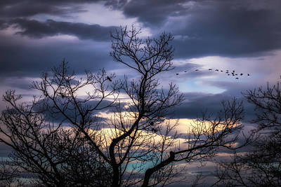 Geese Photograph - Between Seasons by Bob Orsillo