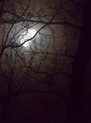 Beware The Rougarou Moon Print by John  Glass