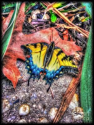 Nature Digital Art - Beyond Chrysalis-tiger Swallowtail by Dan Stone