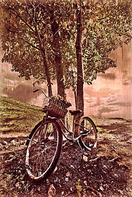 Bicycle In The Park Print by Debra and Dave Vanderlaan