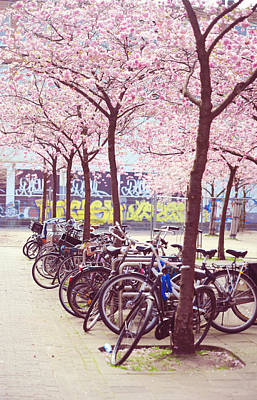Bicycles Under The Blooming Trees. Pink Spring In Amsterdam  Print by Jenny Rainbow