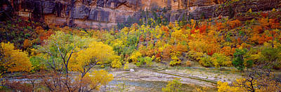 Zion National Park Photograph - Big Bend In Fall, Zion National Park by Panoramic Images