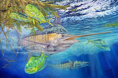Mahi Mahi Painting - Big Blue Hunting In The Weeds by Terry  Fox