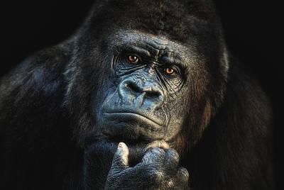 Contemplative Photograph - Big Dreamer by Joachim G Pinkawa