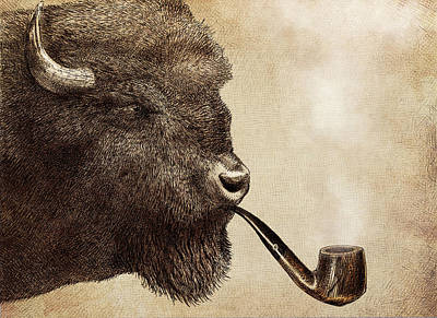 Bison Drawing - Big Smoke by Eric Fan