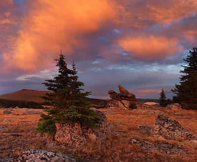 Bighorn Photograph - Bighorn Mountains Sunrise by Leland D Howard