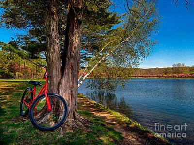 Biking To Horseshoe Lake Print by Mark Miller