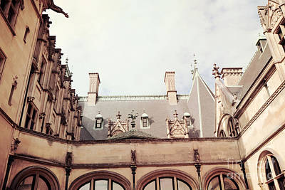Biltmore Mansion Estate Rooftop Architecture - Italian Ornate Facade And Gargoyles Print by Kathy Fornal