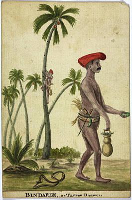 Bindaree Print by British Library