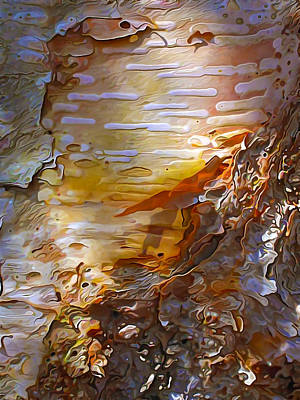 Manipulation Photograph - Birch Bark 1 by Bill Caldwell -        ABeautifulSky Photography