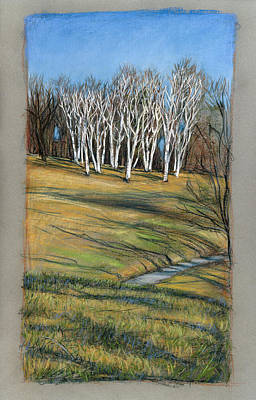 Birch Trees  Original by Mary Wilshire