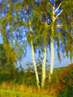 Birches In Sunlight Print by Impressionist Art