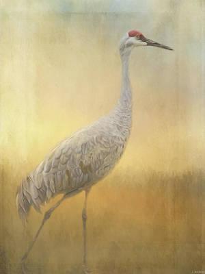 Sea Birds Painting - Bird Art - Walking Away by Jordan Blackstone