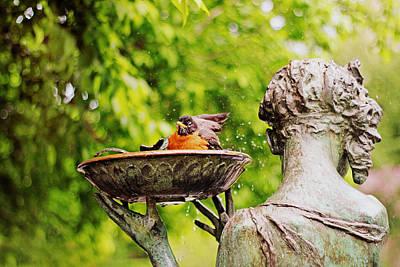 Bird Bath Fountain Print by Jessica Jenney