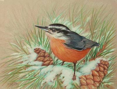 Chickadee Drawing - Bird Drawing by Cynthia Stewart