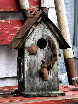 Photograph - Bird House With Water by Ron Roberts