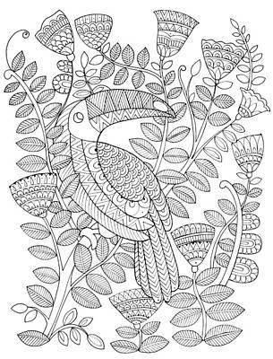 Toucan Drawing - Bird Kakatua 1 by Neeti Goswami