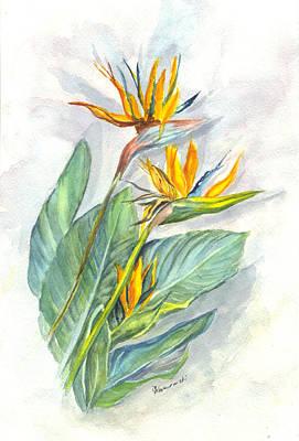 Bird Of Paradise Print by Carol Wisniewski