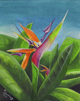Painting - Hawaiian Bird Of Paradise by Thomas J Herring
