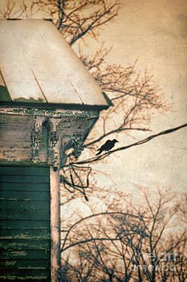 Bird On A Wire To Victorian House Print by Jill Battaglia