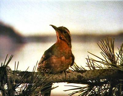Donna Hayward Painting - Bird On The Wire by Luis Ludzska