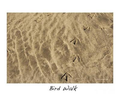 Bird Walk Print by Artist and Photographer Laura Wrede