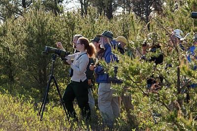 Bird Watchers Print by Jim West