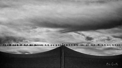 Metaphysical Photograph - Birds by Bob Orsillo