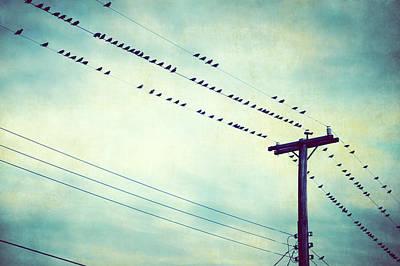 Telephone Poles Photograph - Bird's Eye View by Carolyn Cochrane