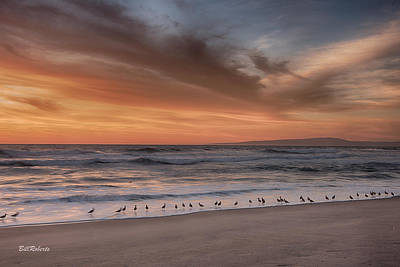 Birds In The Surf Print by Bill Roberts