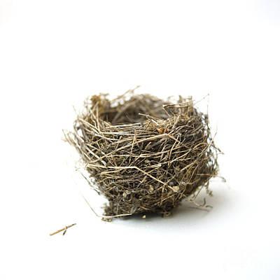 Absence Photograph - Bird's Nest by Bernard Jaubert