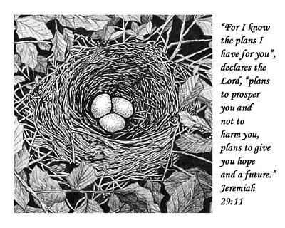 Drawing - Bird's Nest With Scripture by Janet King