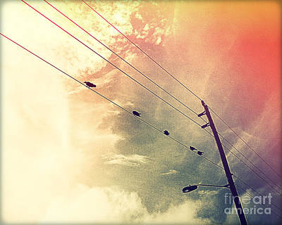 Telephone Poles Photograph - Birds On A Wire II by Chris Andruskiewicz