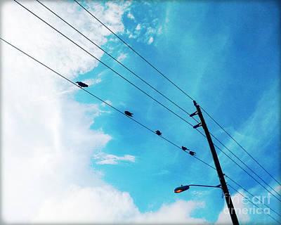 Birds On A Wire IIi Print by Chris Andruskiewicz